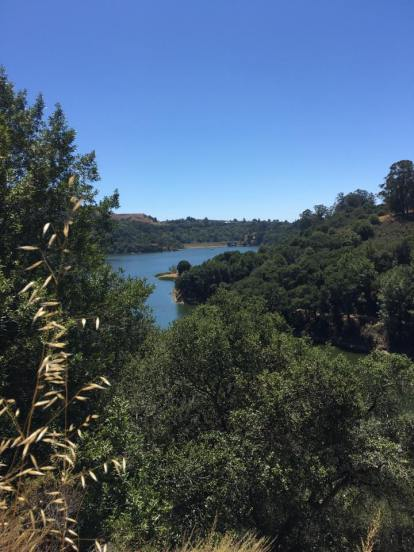 lake chabot mile 28